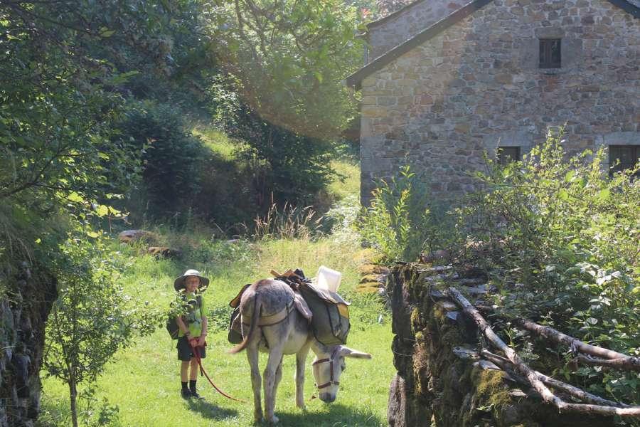 Familienfreundliche Eselwanderung in den westlichen Cevennen - Wanderung