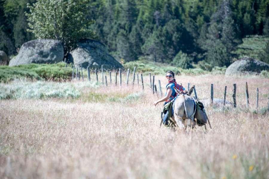 Cevennen, Eselwanderung mit Komfort - Wanderung