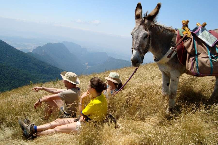 Eselwanderung mit Camping in der provençalischen Drôme - Wanderung