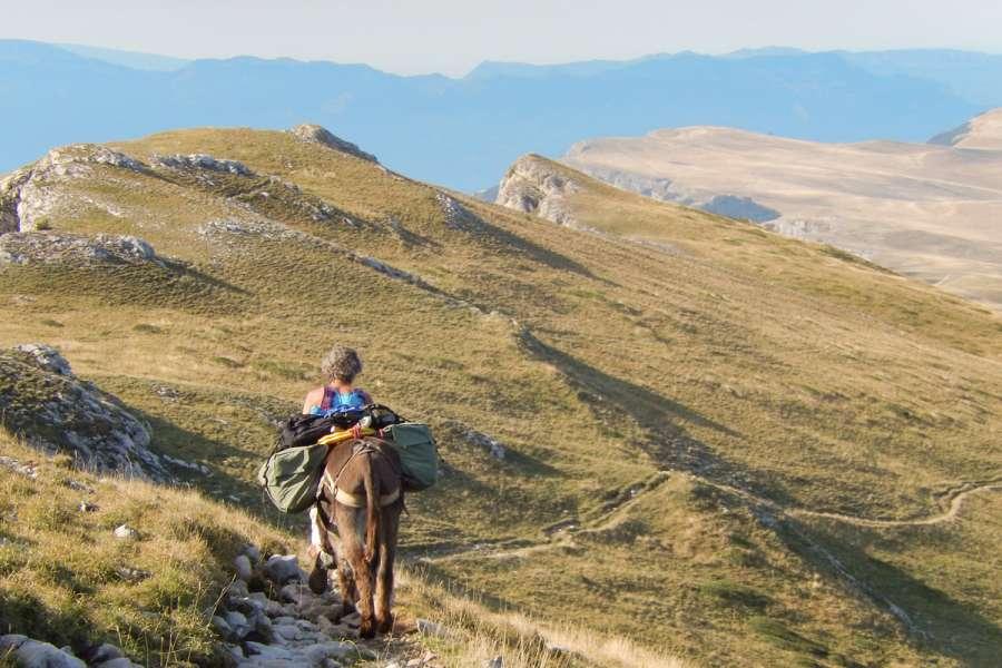 Eselwanderung Vercors - Wanderung