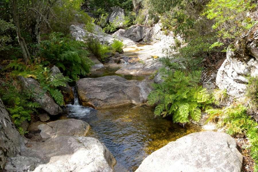 Korsika - Wanderreise in der Alta Rocca - Wanderung