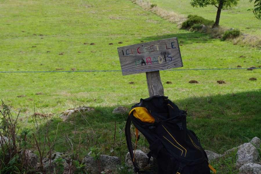 Rundwanderung Mont Lozère - Wanderung